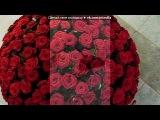 « [ Люби меня как вор свободу,а я тебя как роза воду... ]» под музыку ♥ - vechnaya lyubov. Picrolla